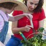 Yardless Gardening